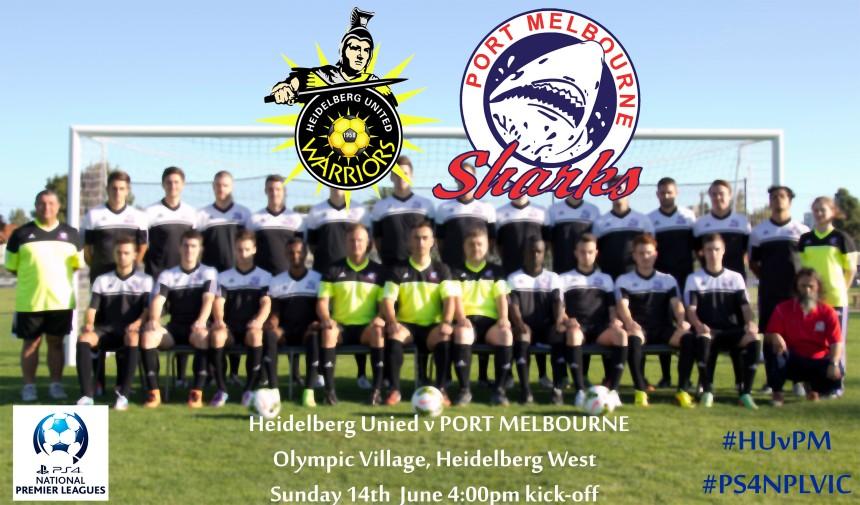 Heidelberg United v Port Melbourne Matchday photo