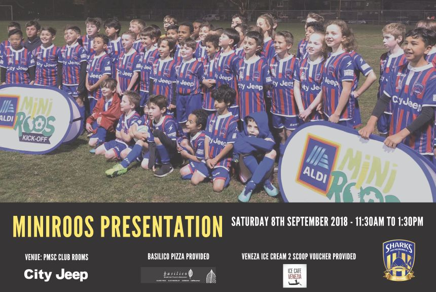 MiniRoos Presentation Poster_180822