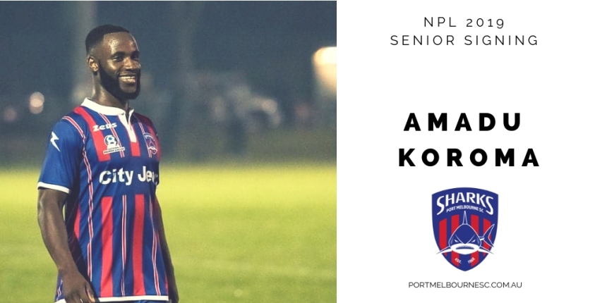 Amado Koroma 2019 Signing