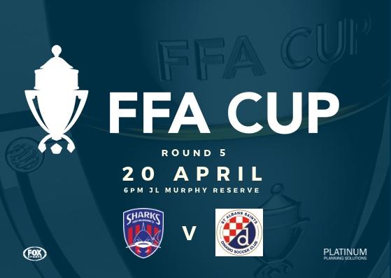 FFA Cup_Round 5_St Albans Saints SC_190420