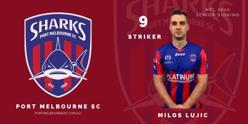 Milos Lujic_9 Striker